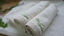 有機棉毛巾 (3)